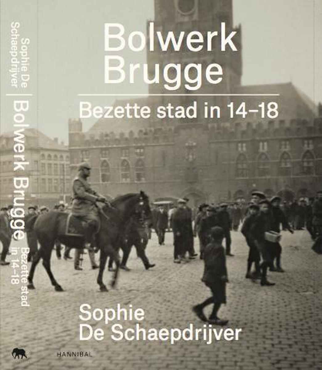Sophie De Schaepdrijver,Bulwork bruges