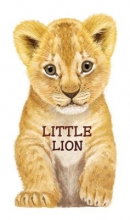 Rigo, L Little Lion