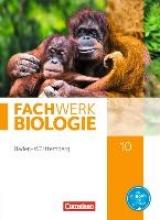 Hampl, Udo,   Marquarth, Andreas,   Pohlmann, Anke Fachwerk Biologie 10. Schuljahr - Baden-Württemberg - Schülerbuch