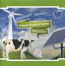 Fokko  Bosker , Groene energie in Fryslan