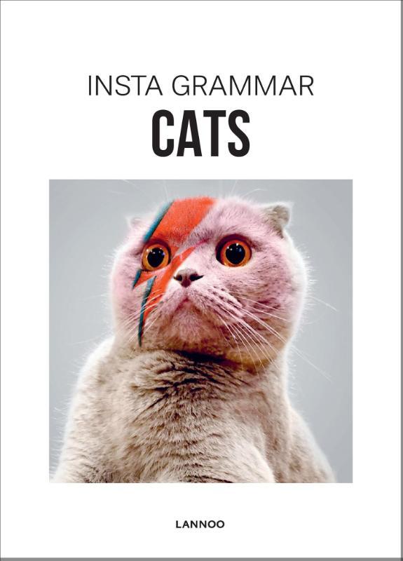 Irene Schampaert,Cats