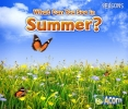 Smith, Sian,What Can You See in Summer?