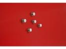 ,magneet voor glasbord Sigel rond 10mm Strong 5 stuks