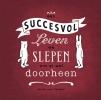 Sylvia van Ommen,Een succesvol leven, we slepen ons er wel doorheen