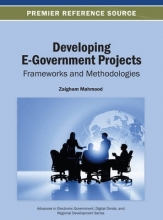Developing E-Government Projects