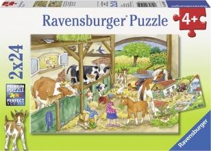 Rav-091959 , Puzzel vrolijke boerderijleven - 2x 24 stuks
