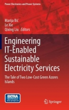Engineering IT-Enabled Sustainable Electricity Services