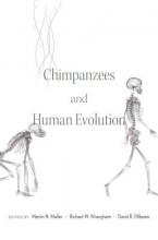 Martin N. Muller Chimpanzees and Human Evolution