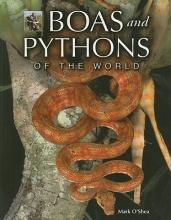 Mark O`Shea Boas and Pythons of the World