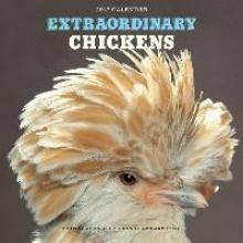 Green Armytage, Stephen Extraordinary Chickens