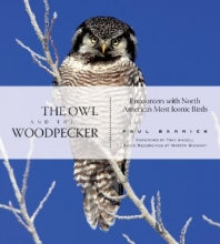 Bannick, Paul The Owl and the Woodpecker