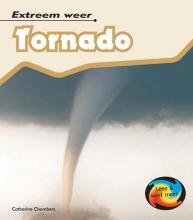 Catherine  Chambers Tornado