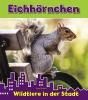 Isabel  Thomas ,Eichhörnchen, Wildtiere in der stadt