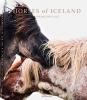 Laiz, Guadalupe, Horses of Iceland