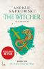 Andrzej  Sapkowski,The Witcher - De Vrouwe van het Meer
