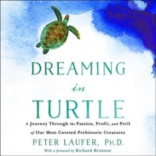 Laufer, Peter, Ph.D. Dreaming in Turtle