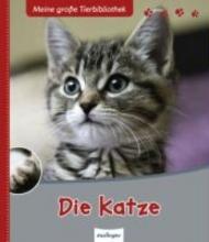 Frattini, Stephane Die Katze