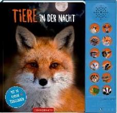 Baier, Katja Tiere in der Nacht