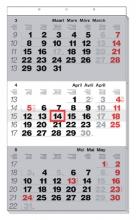 , 3-Maandskalender 2021 Manager meertalig
