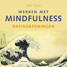 E.  Maex Werken met mindfulness Basisoefeningen