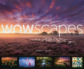 Albert Dros , WOWscapes