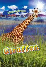 Kaitlyn Duling , Giraffen