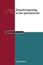 , Schaalvergroting in het Privaatrecht