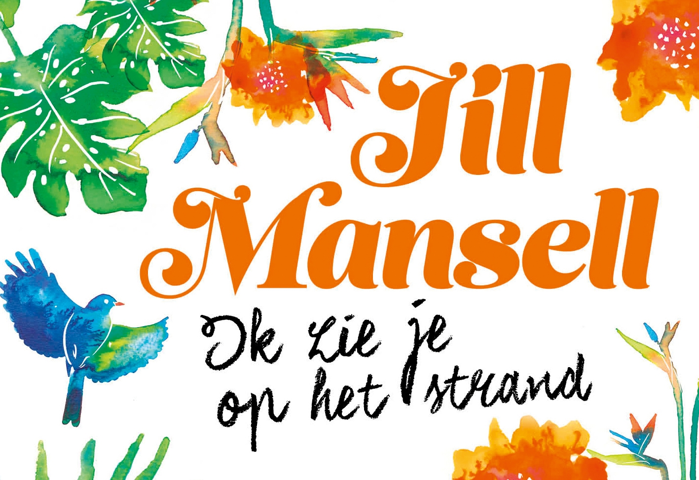 Jill Mansell,Ik zie je op het strand DL