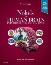 Todd, Ph.D. Vanderah Nolte`s The Human Brain in Photographs and Diagrams