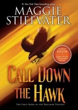 Maggie Stiefvater , Call Down the Hawk