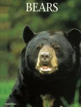 Robert Elman Bears