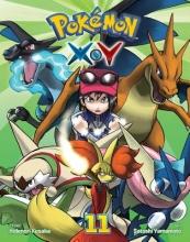 Kusaka, Hidenori Pokemon X-Y 11