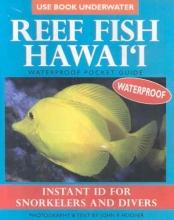 Reef Fish Hawai`i