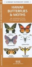 Kavanagh, James Hawaii Butterflies & Moths