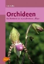 Röllke, Lutz Orchideen