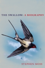 Stephen Moss , The Swallow