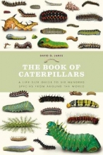 David,James Book of Caterpillars