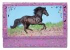 8086 a , Horses dreams briefpapier in vakjesdoos met register, pink