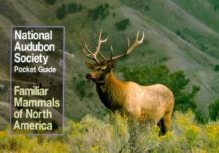 National Audubon Society National Audubon Society Pocket Guide to Familiar Mammals