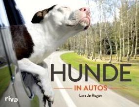 Regan, Lara Jo Hunde in Autos