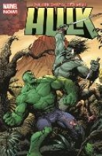 Waid, Mark Hulk Bd. 2