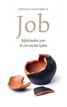 Gertjan  Oosterhuis Job