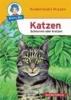 Herbst, Nicola,Katzen - Schnurren oder Kratzen