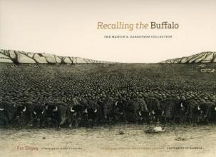Ken Tingley Recalling the Buffalo
