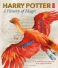 <b>Harry Potter</b>,A History of Magic
