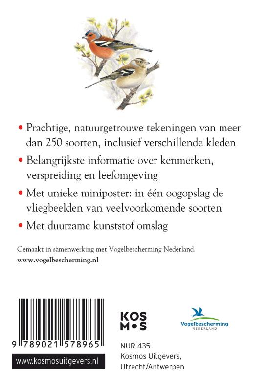 ,Compactgids Vogels