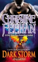 Feehan, Christine Dark Storm