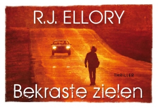 R.J.  Ellory Bekraste zielen