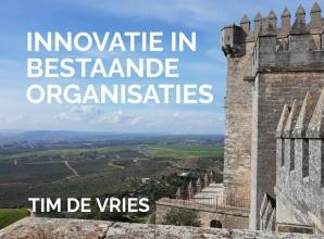 Tim De Vries , Innovatie in bestaande organisaties