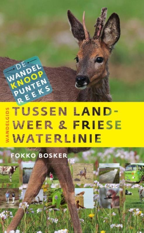 Fokko Bosker,Tussen landweer & Friese waterlinie